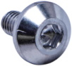 BLUNT CLAMP BOLT